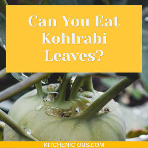 Can You Eat Kohlrabi Leaves?
