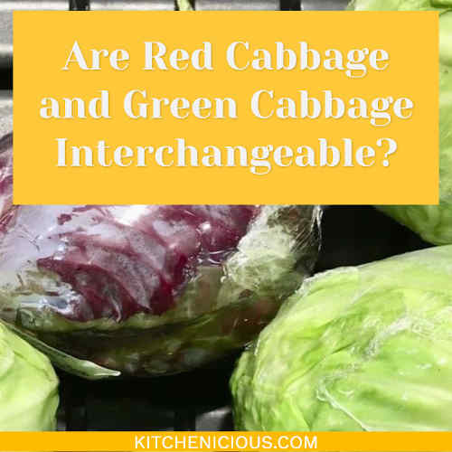 Are Red Cabbage And Green Cabbage Interchangeable Kitchenicious