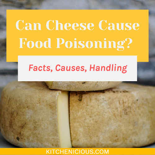 Can Cheese Cause Food Poisoning? (Facts, Causes, Handling)