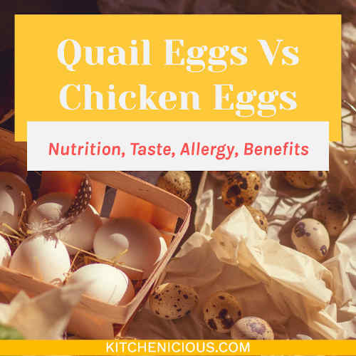 Quail Eggs Vs Chicken Eggs (Nutrition, Taste, Allergy, Benefits)