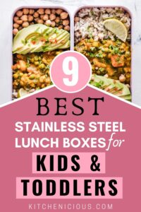 best stainless steel healthy lunch boxes containers for kids and toddlers